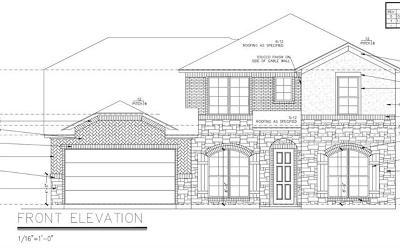 Georgetown Single Family Home For Sale: 213 Millard St
