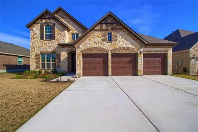 Round Rock Single Family Home For Sale: 6721 Leonardo Dr