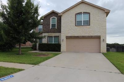 Coryell County Single Family Home For Sale: 1604 Walker Place Blvd
