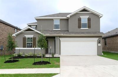 Hays County Single Family Home For Sale: 135 Mary Max Circle