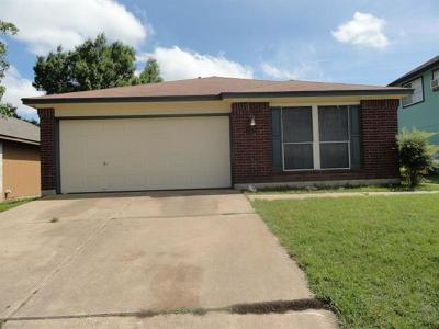 Round Rock Single Family Home For Sale: 1507 Hollow Tree Blvd