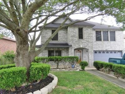 Austin Single Family Home For Sale: 1221 Porterfield Dr