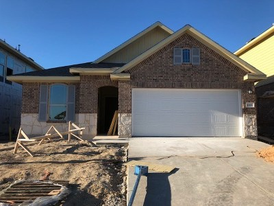 Travis County Single Family Home For Sale: 1007 Cadence Dr