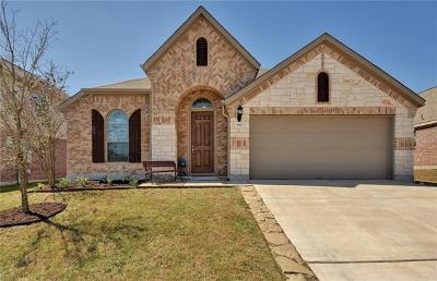 Buda Single Family Home For Sale: 843 Hot Spring Vly