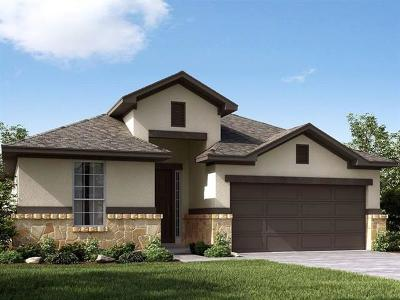 Leander Single Family Home For Sale: 704 Paper Daisy Path