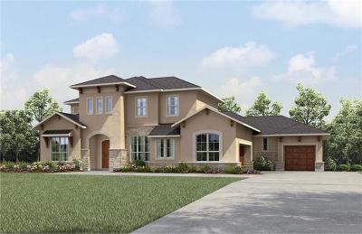 Liberty Hill Single Family Home For Sale: 410 Umbrella Sky