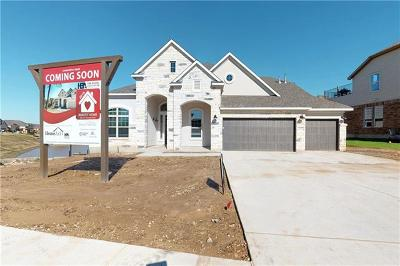 Austin Single Family Home For Sale: 6124 Llano Stage Trl