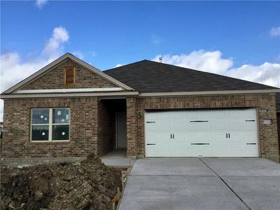 Manor Single Family Home For Sale: 12108 Texana Trl