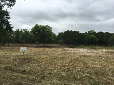 Williamson County Residential Lots & Land For Sale: Lot 45 Buffalo Trl