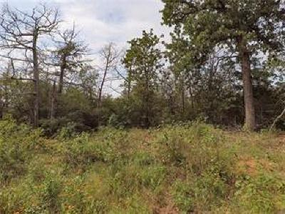 Bastrop County Residential Lots & Land For Sale: 123 Palikea Cir