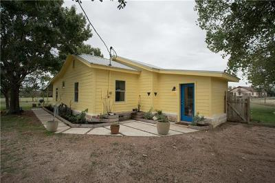 Liberty Hill Single Family Home For Sale: 235 Craigen Rd