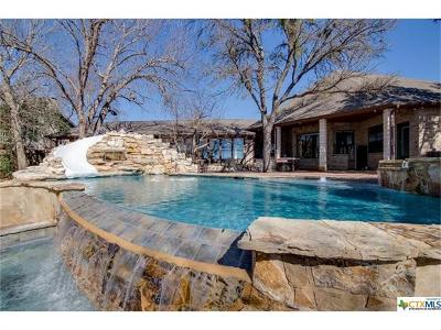 Belton Single Family Home For Sale: 650 Benchmark Trl