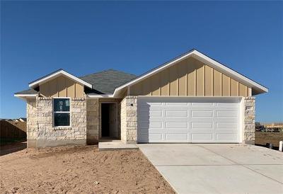 Elgin Single Family Home For Sale: 110 Saranac Drive