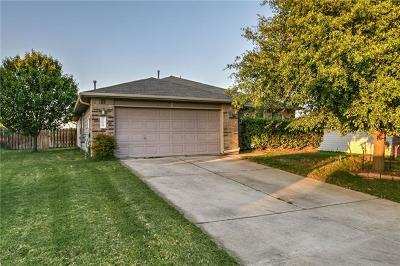 Kyle Single Family Home For Sale: 353 Lake Washington Dr