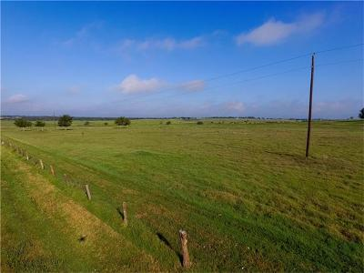 Schulenburg TX Farm For Sale: $225,000