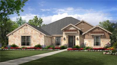 Single Family Home For Sale: 203 Blackstone Cv