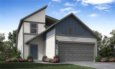 Austin Single Family Home For Sale: 11801 Cimaizon Drive