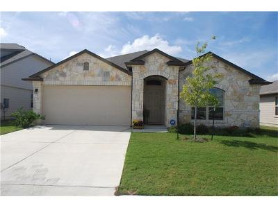 Georgetown Single Family Home For Sale: 719 Pinnacle Dr