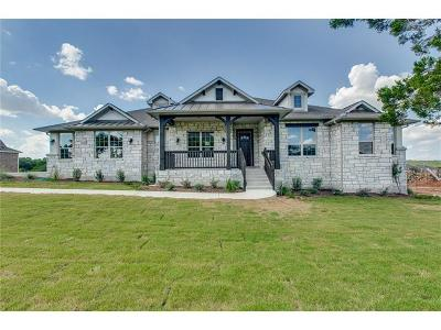 Dripping Springs Single Family Home For Sale: 17400 Avion Dr