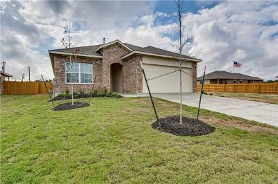 Kyle Single Family Home For Sale: 245 Cibolo Creek Dr