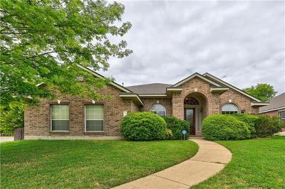 Pflugerville Single Family Home For Sale: 20100 Kearney Hill Rd