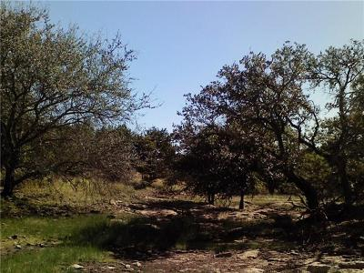 Burnet County Residential Lots & Land For Sale: Lot 19 Park View Dr
