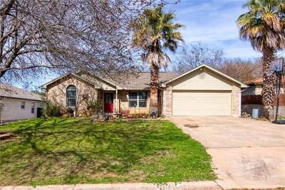 Marble Falls Single Family Home For Sale: 207 Villa Vista Way