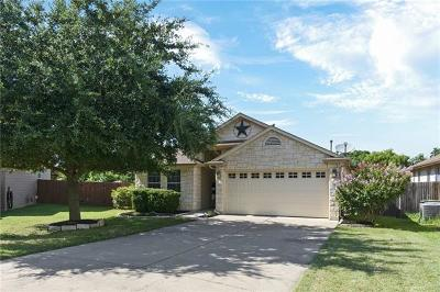 Hutto Single Family Home For Sale: 123 Towan Way