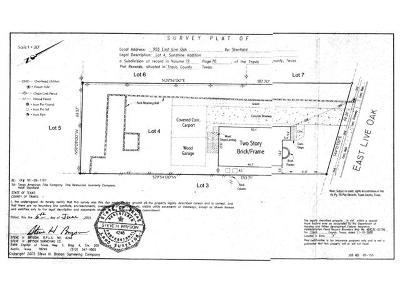 Austin Residential Lots & Land For Sale: 903 E Live Oak Street St