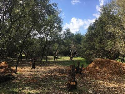 Dripping Springs Residential Lots & Land For Sale: 10018 Longhorn Skwy