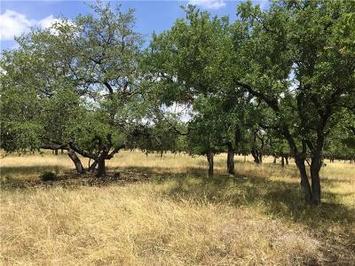 Georgetown Residential Lots & Land For Sale: 138 Logan Ranch Rd