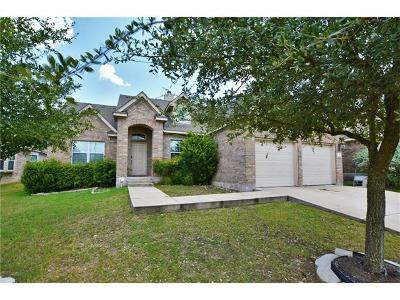 Round Rock Single Family Home For Sale: 132 Justin Leonard Dr