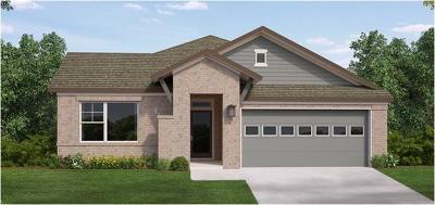 Buda Single Family Home For Sale: 771 Bridgestone Way
