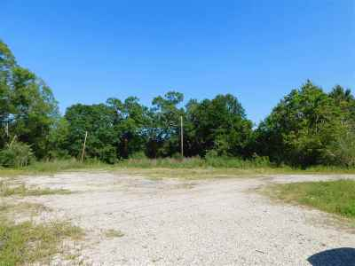 Kountze Commercial For Sale: 7227 Hwy 69 S
