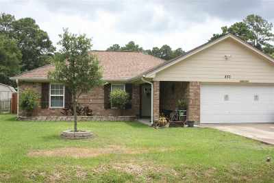Vidor Single Family Home For Sale: 850 N Tannahill