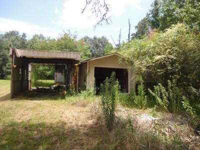 Vidor Single Family Home For Sale: 765 W Davis