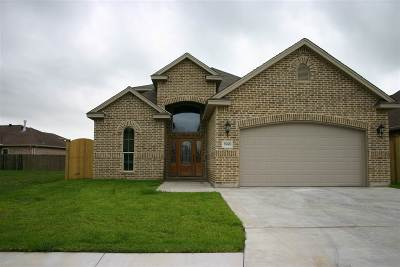 Nederland Single Family Home For Sale: 7885 Oakridge Drive
