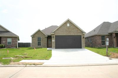 Single Family Home For Sale: 10150 Dominion Ranch