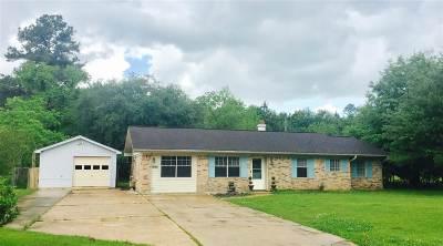 Lumberton Single Family Home For Sale: 7865 Ginger Ln