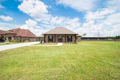 Vidor Single Family Home For Sale: 305 Lakewood Dr