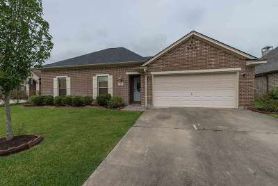 Beaumont Single Family Home For Sale: 3545 Grayson