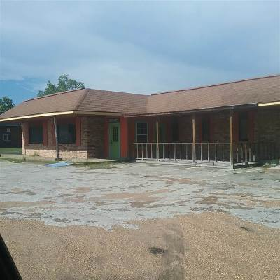 Kountze Commercial For Sale: 655 S Pine Street