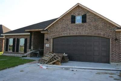 Port Arthur Single Family Home For Sale: 10210 Shady Ranch
