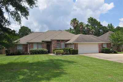 Lumberton Single Family Home For Sale: 143 Norwood Drive