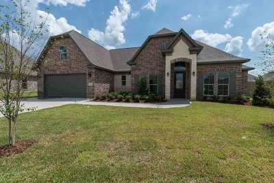 Lumberton Single Family Home For Sale: 205 Chaple Creek Drive