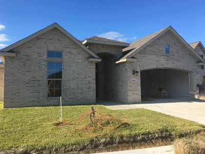 Single Family Home For Sale: 2535 Cedar Bend Ct