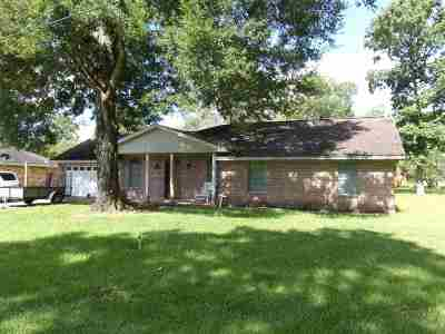 Vidor Single Family Home For Sale: 253 S Gum