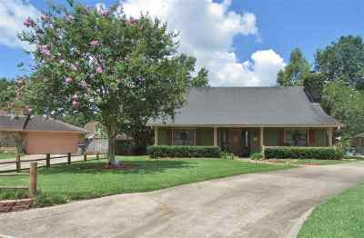Beaumont Single Family Home For Sale: 4690 Taft Street