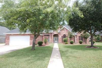 Lumberton Single Family Home For Sale: 211 Hannah Lane