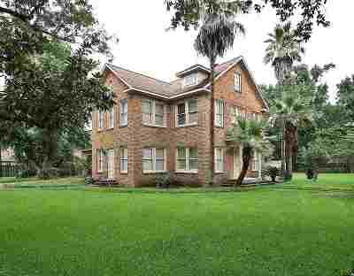 Port Arthur Single Family Home For Sale: 4601 Springdale Street